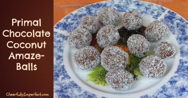 Primal Chocolate Coconut Amaze-balls