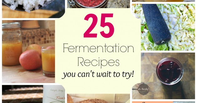 25 Fermentation Recipes you can't wait to try!
