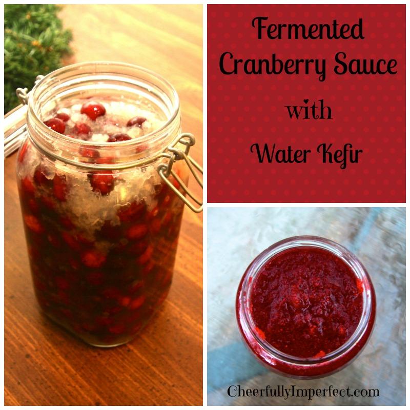 fermented cranberry sauce 2