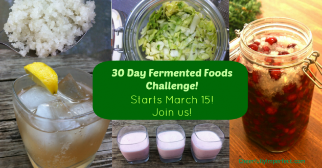 30 Day Fermented Foods Challenge – starts March 15, 2014