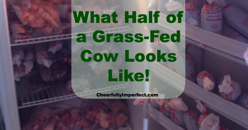 What Half of a Grass Fed Cow Looks Like!