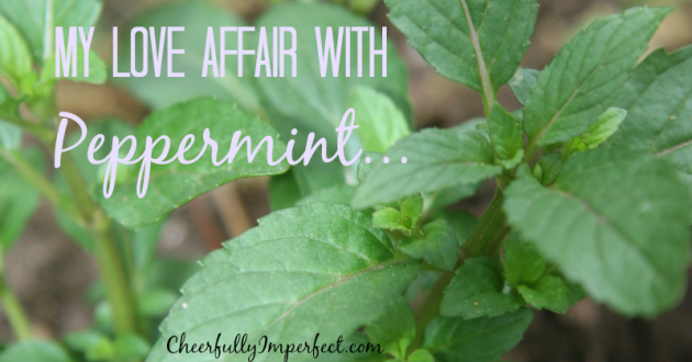 My Love Affair with Peppermint