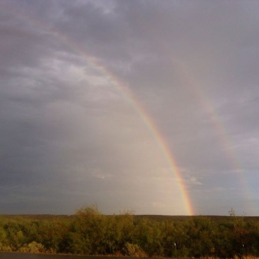 welcome home rainbow from Texas!