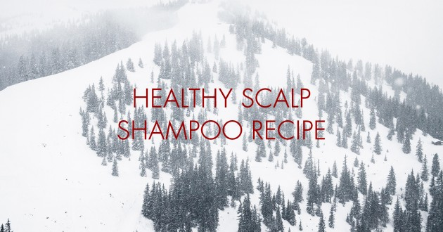 Healthy Scalp Shampoo
